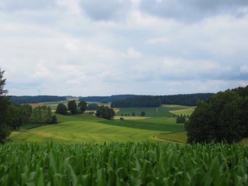 Beispiel für einen der Panoramablicke