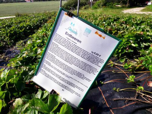 Schilder helfen mit Informationen, die Lebensmittel richtig zu ernten.